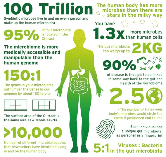 digestive health trends